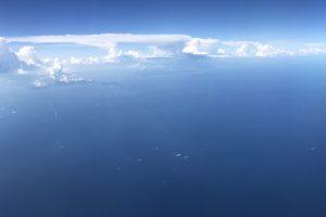 ANAマイルでビジネスクラスに乗って快適な空の旅