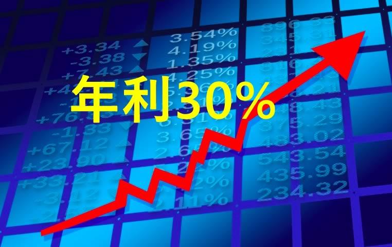 少額だけど配当利回り最大30%の国内投資がある